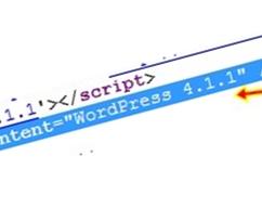 Cara Menghilangkan Versi Wordpress Secara Total Versi Terbaru