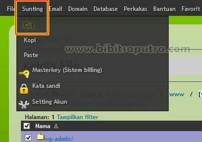 Cut atau Pindah File WordPress keluar Folder Instalasi