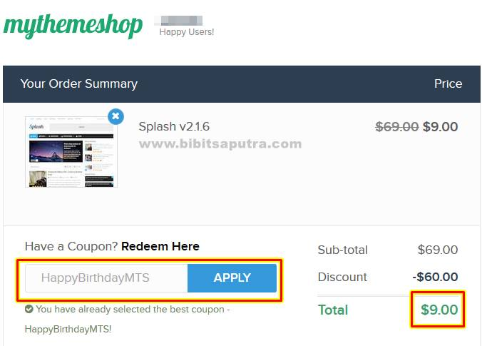 Download Splash WordPress Theme