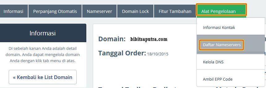 mengatur nameserver dns domain ke vps 3