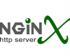 Nginx Web Server on VPS Webuzo