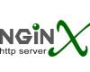 Nginx Web Server on VPS Webuzo
